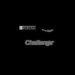 Idc logo-01
